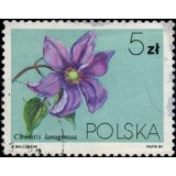 POL Selo, 1984, (U), Clematis Flowers (Clematis texensis).
