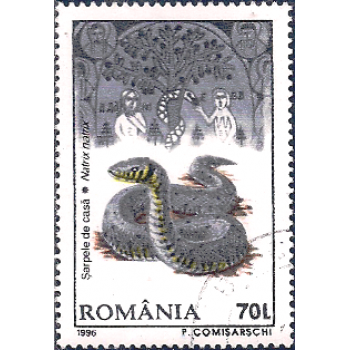 ROM Selo, 1996, (Mint), Yt:RO 4348, Romanian Wildlife, European Grass Snake (Natrix natrix).