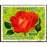 "SHA Selo, 1966, (Mint), Yt:AE-KF 25-B, Red yellow Polyantha hybrid ""Sabrina""; french breeding."
