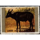 AUQ Selo, 1972, (N), Airmail - Endangered Animals.